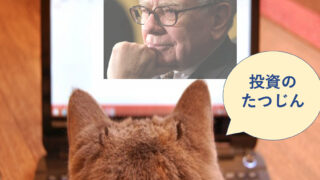 バフェットさんと猫